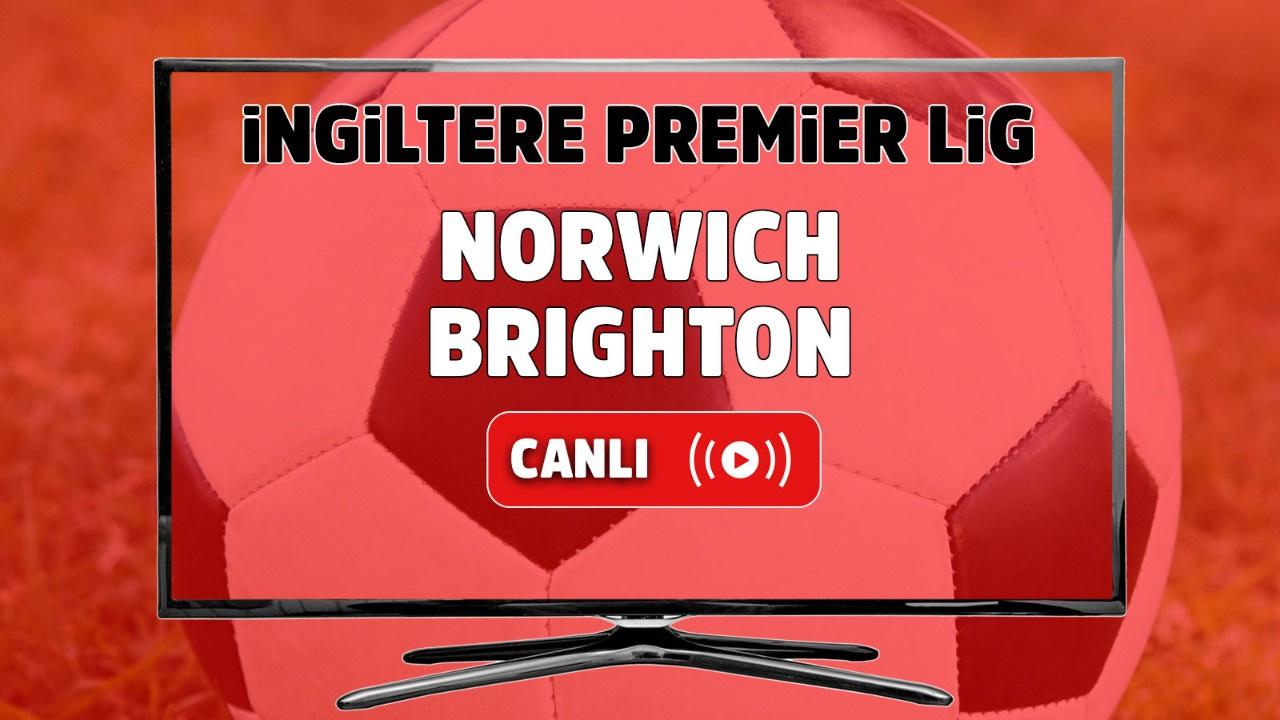 Norwich - Brighton Canlı